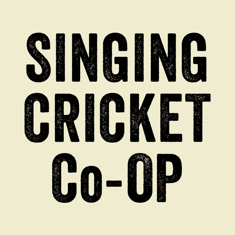 Singing Cricket